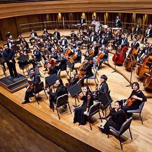 Metropolitan Festival Orchestra (SGP)